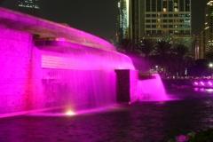UAENationalDay2008-_3_
