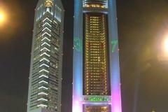 UAENationalDay2008-_5_